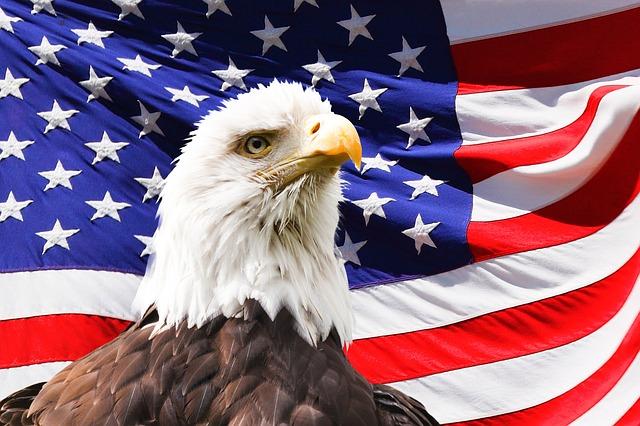 Bald Eagle Symbolism in the United States